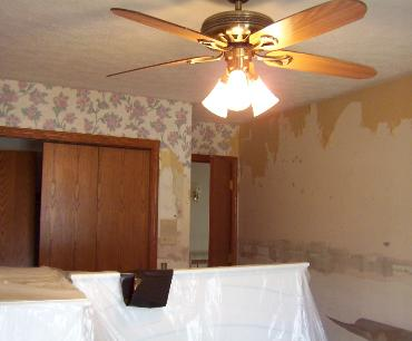 Interior Wall Paper Removal
