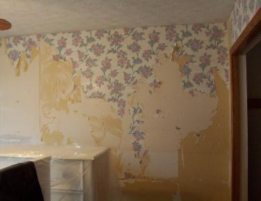 Removal of wall paper